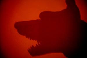 Imagen de sombra de perro peligroso